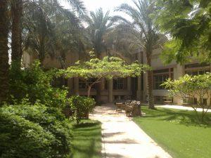 palmeraie2010